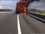 Sobre carretera Veracruz-Xalapa, se incendió ADO