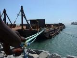 APIVER lamenta la muerte mujer buzo en obras del Nuevo Puerto de Veracruz