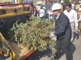 Invita alcalde de Boca del Río a reciclar la Navidad