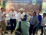Maiz transgénico, invadió el mercado mexicano