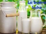 Defienden a proveedor de leche agria