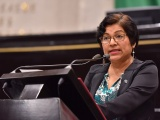 Decretos de la Federación no protegen la flora, fauna y el abasto del agua: Rocío Pérez