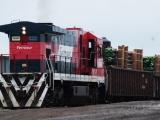 Se cuenta con vías férreas seguras en Veracruz