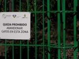 Sin aparecer cien gatos reubicados en el parque Víveros