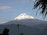 Piden al Ejército impedir deforestación del Pico de Orizaba