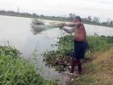 Canales y lagunas contaminadas un riesgo para practicar la pesca: Ambientalistas