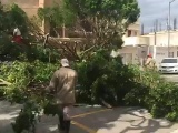 Más de 30 reportes por afectaciones de viento del norte en el puerto