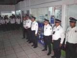 """No debe quedar en el """"desamparo"""" Tránsito de Veracruz: Legisladora"""