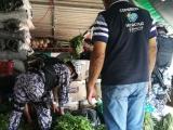 Navales realizaron búsqueda de material pirotécnico en el mercado Malibrán