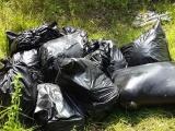 Investiga FGE hallazgo de restos humanos, en Maltrata