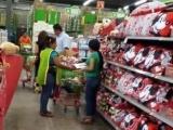 Inicia CROC campaña de apoyo a trabajadores en transnacionales Sam's club, Walmart, Aurrerá y Superama