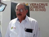 Veracruz no presenta alta incidencia de dengue pronosticada OMS