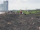 Ciudadanos realizan limpieza en la Isla del Amor y la laguna de Mandinga