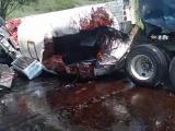 Carambola en autopista Veracruz-Cardel deja saldo de 2 personas fallecidas y varios lesionados