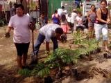 Familias se suman a campaña reforestación para contrarrestar afectaciones por el nuevo puerto