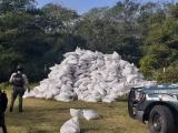 Localizan en rancho de Cotaxtla 1,120 sacos de pimienta