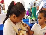 Analizan construcción de otro Centro de Salud Animal en la zona norte de la ciudad Veracruz