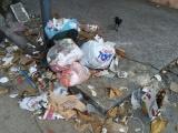 Instalarán megacontenedor de basura  en el municipio de Veracruz