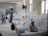 Suman casi cinco mil casos de dengue