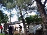 Hallan cadáver de mujer en bajos de puente Fidel Velázquez