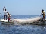 Pago a pescadores se ve afectado por seudolíderes