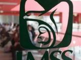 IMSS adelanta pago de pensiones del mes de mayo y beneficiará a 3.8 millones de personas