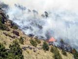 Equipo Estatal de Manejo de Incidentes atiende incendio en el Parque Nacional del Cofre de Perote