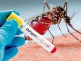 Veracruz con 875 casos de dengue