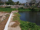 Alcanza nivel crítico el río Jamapa por estiaje