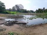 Sobreexplotación de mantos freáticos provoca sequía en lagunas