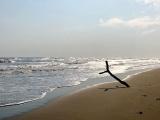 Crece pérdida de playas en Veracruz