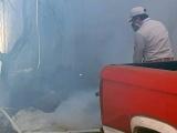 Fumigan  el centro de la ciudad ante posible brote de dengue
