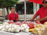 Vendedores  de zona de playas se dedican a la venta  casa por casa para subsistir