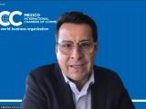 El ciudadano común y las empresas serían víctimas de la desaparición de los Organismos Autónomos del Estado: ICC México