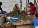 Abandonan autoridades a La Laguna, piden restauranteros promoción turística