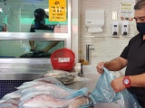 Venta de pescados y marisco alcanzaría hasta un incremento del 40 por ciento en Semana Santa