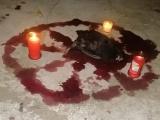 Realizan con animales  ritual satánico  en colonia de Veracruz