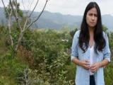 Cuitláhuac, incapaz para hacer frente a una crisis: Senadora Indira Rosales